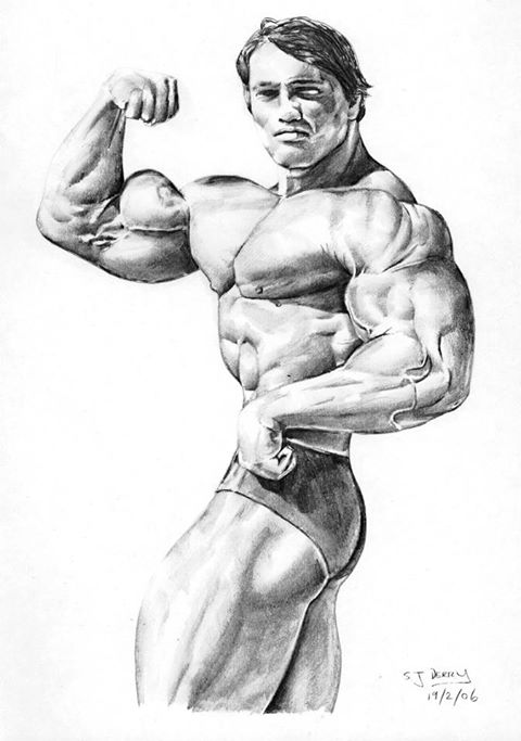 Muskelvækst 11