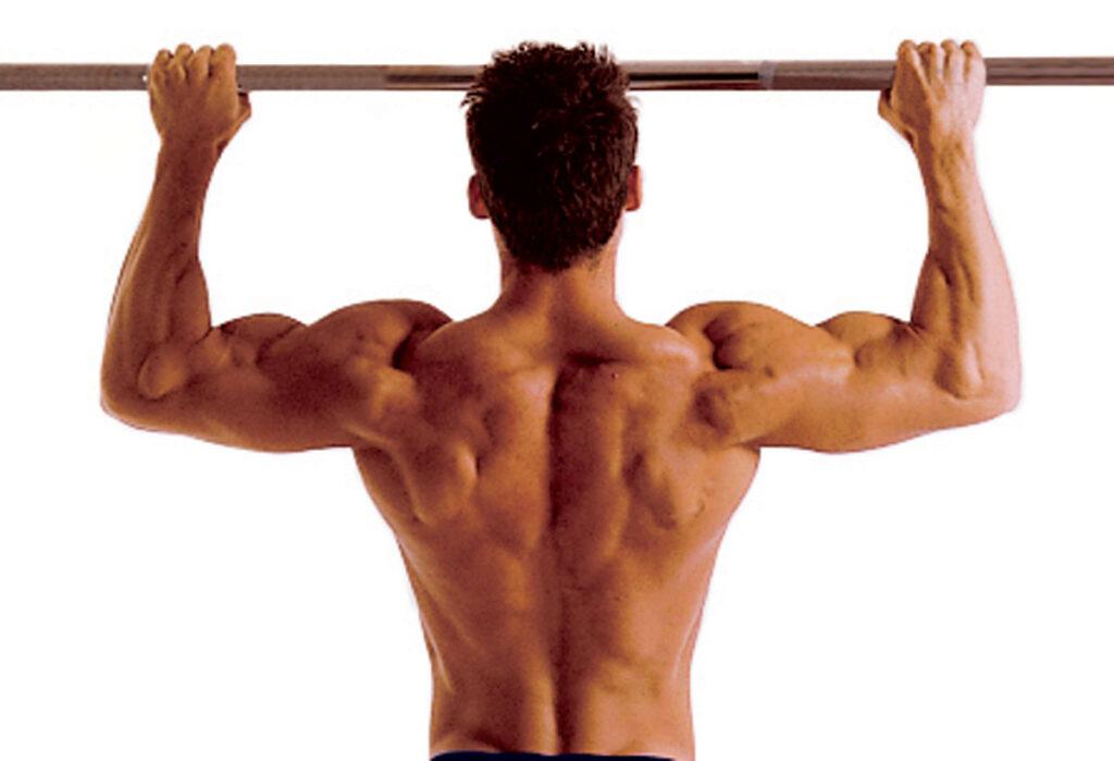 Muskelvækst 26