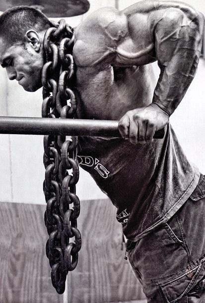 Muskelvækst 16